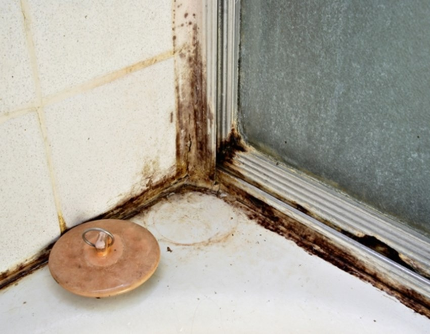 Mold-growing-in-the-bathroom-can-adversely-impact-the-air-quality-of-a-home_1137_438359_0_14034972_500